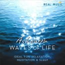 Ashaneen: Waves of Life (CD)
