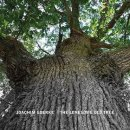 Goerke, Joachim: The Lonesome Old Tree (CD)