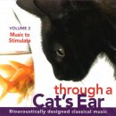 Leed, Joshua & Spector, Lisa: Through a Cats Ear Vol. 2 (CD)