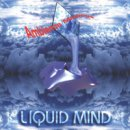 Liquid Mind 1: Ambience Minimus (CD)