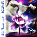 Agniman: Reiki Flowers Vol. 2 (CD) -A