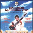 Chaudhuri, Devabrata: Vol. 6/4 Afternoon Melody f�r...