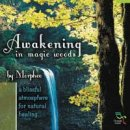 Morpheo: Awakening in the Magic Woods (CD)