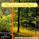 Nature Sounds: An Evening In Forest (CD)
