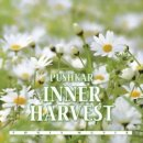 Pushkar: Inner Harvest (CD)