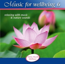 V. A. (Fönix): Music for Wellbeing 6 (CD)