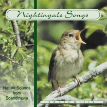 NatureSounds: Nightingale Songs (CD)