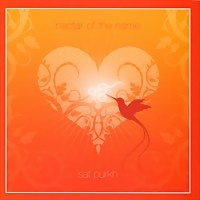 Sat Purkh: Nectar of the Name (CD)