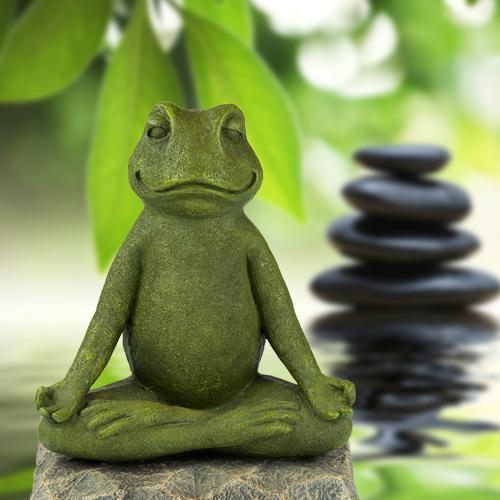 Frosch in Meditation